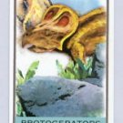 2010 Topps Allen and Ginter Mini Monsters of the Mesozoic #MM15 Protoceratops (Miniature Card)(Baseb