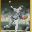 1991 Fleer #187 Duane Ward ( Baseball Cards )