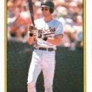 1990 Bowman 256 Bill Ripken