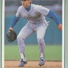 1991 Leaf 244 Pete O'Brien