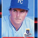 1988 Donruss 466 Bill Pecota RC