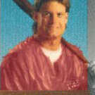 1993 Studio Superstars on Canvas #7 Darren Daulton