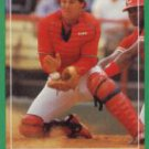 1988 Score 358 Tom Pagnozzi RC