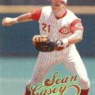 1999 Ultra #31 Sean Casey