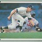 1991 Leaf #351 Alan Trammell