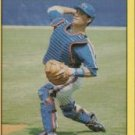 1991 Fleer #150 Todd Hundley