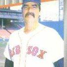 1989 Fleer 92 Dennis Lamp
