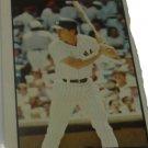 1978 Yankees SSPC Diary #25 Graig Nettles