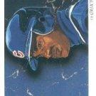 1993 Upper Deck #819 Sammy Sosa TC