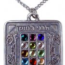 "Chestpiece Necklace Stainless Steel Chain 20""  made in Isreal"