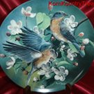 Knowles Birds of Your Garden Bluebird Kevin Daniels