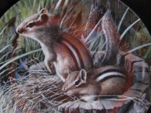 Chipmunk Kevin Daniel Friends of the Forest Plate