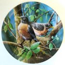 Robin Birds of Your Garden Collector Plate