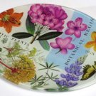 Michel Design Botanica Glass Soap Dish