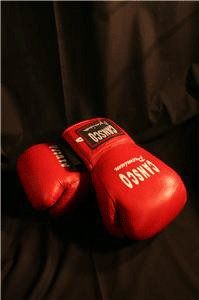 Cansco 16 oz  Leather Boxing Gloves Red Velcro
