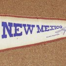 New Mexico Vintage Pennant