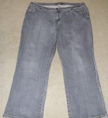 Venezia Women's Jeans 5 Petite Inseam 29 Inches