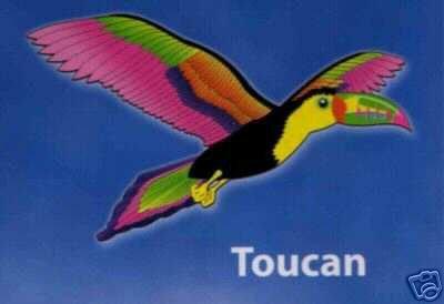 Toucan Kite - Multi-Colored Single String Kite