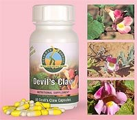 Devil�s Claw