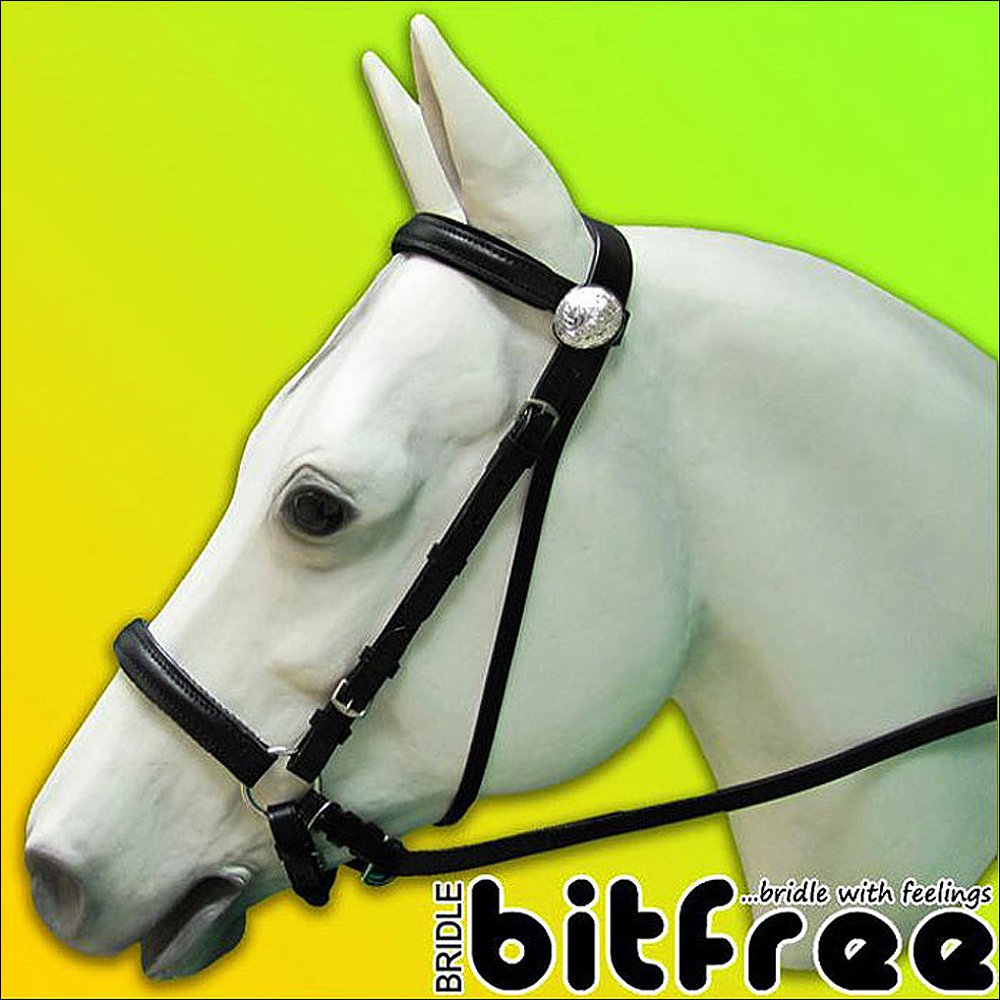 BB100-F HILASON WESTERN LEATHER BLACK BITLESS BITFREE BRIDLE WITH REINS