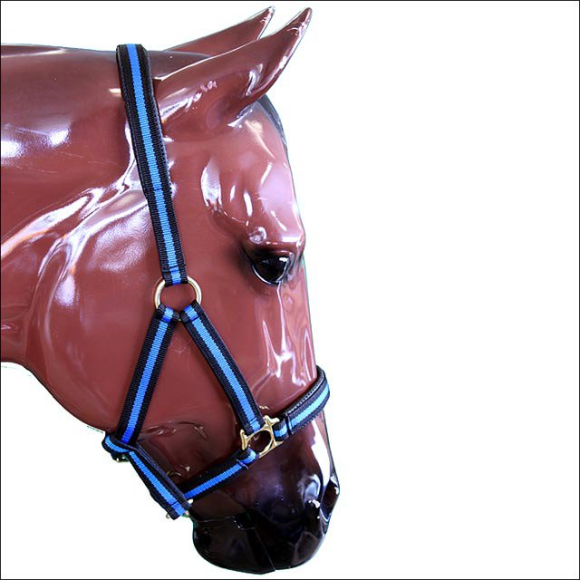 WEAVER BLUE PADDED ADJUSTABLE CHIN AND THROAT SNAP HALTER SMALL HORSE