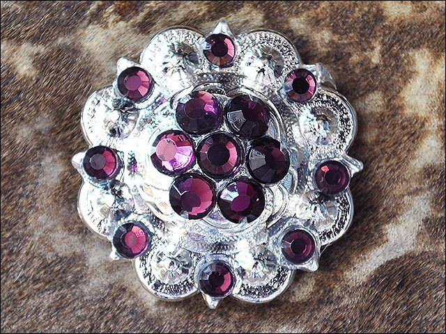 1 AMETHYST CRYSTAL BERRY CONCHO RHINESTONE HEADSTALL SADDLE TACK BLING COWGIRL