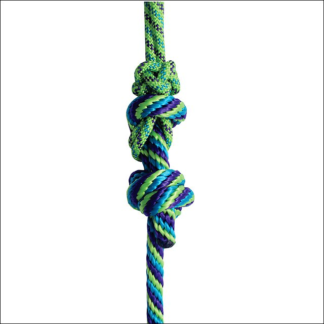 10FT LIME PURPLE PROFESSIONAL CHOICE WESTERN HORSE NYLON HALTER ROPE