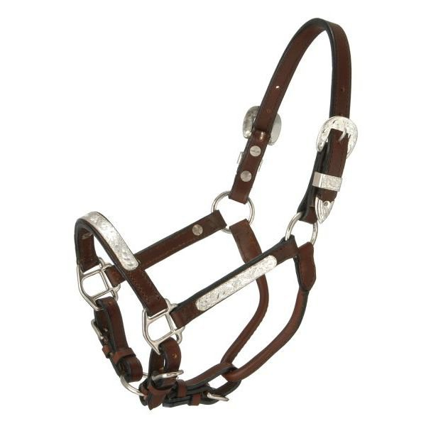 TOUGH 1 YEARLING ROYAL KING SILVER BAR SHOW LEATHER HORSE HALTER DARK OIL