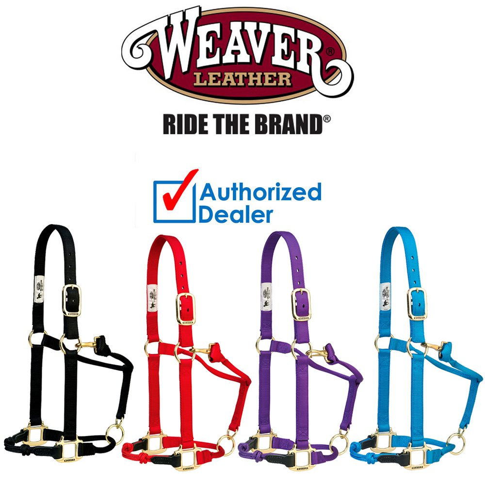 WEAVER HORSE ADJUSTABLE HYBRID HALTER TRAINING BLACK / BLUE / PURPLE / RED