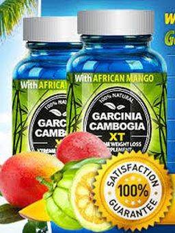 Garcinia Cambogia Xt W African Mango Acai Berry Green Tea Sale