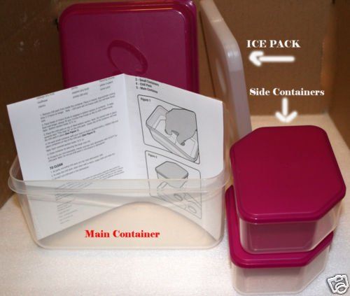 Curves Food Containers to Go for Perfect Meal Size NEW