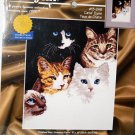 Cats' Eyes Counted Cross Stitch Pattern 9 x 12 Janlynn