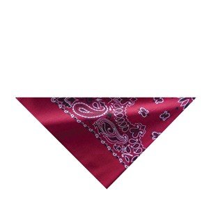3 IN 1 COOLER/BANDANNA/HEAD BAND/NECK TIE RED PAISLEY