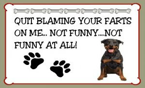New Rottweiler Dog Gifts Magnet Quit Blaming Your Farts On Me
