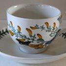 Portmeirion Cup & SaucerThe Botanic Garden S W Ellis England Broom Cytisus 1972