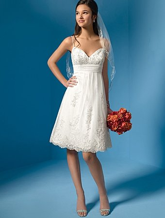 Free Shipping!!Graceful/Spaghetti Strap/Sweetneart Neckline/Knee-length/Wedding Dress/AA004