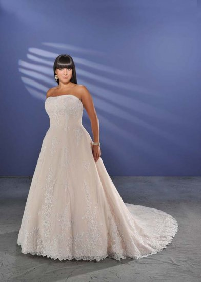Elegant/Strapless/Satin&Lace/A-Line/Princess/Custom-made/plus size/Wedding Dress/PS010