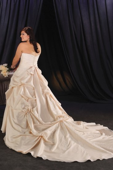 Inviting/Strapless/Taffeta/A-Line/Princess/Plus Size/Floor Length/Bridal Wedding Dress/PS037