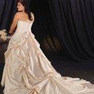 Inviting/Strapless/Taffeta/A-Line/Princess/Plus Size/Floor Length/Bridal Wedding Dress/PS037
