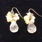 Small Tear Drop Bead Earrings Clear