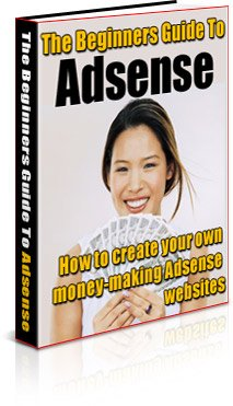 Beginners Guide to AdSense New