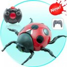 Wall Climbing RC Toy - Lady Bug