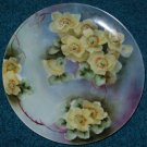 Thomas Sevres Bavaria Plate Hand Painted