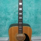 Penco Guitar Acoustic Japan