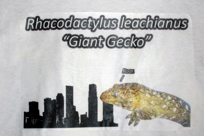 Giant Gecko Kid's Shirt