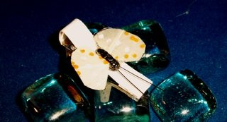 Butterfly A  Hair Accessory Barrette Clip OOAK