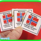 Norway Fun Facts Scout SWAPS Girl Craft Kit-Swaps4Less