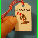 CANADA  Canadian Beaver -  Scout SWAPS Girl Craft Kit - Swaps4Less