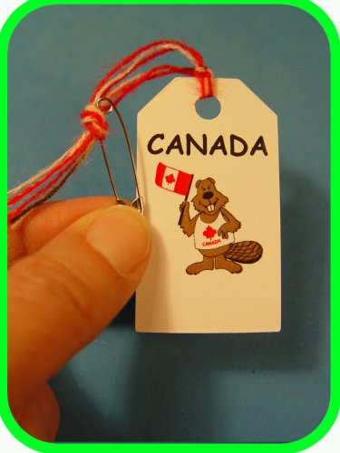 CANADA  Canadian Beaver -  Scout SWAPS Girl Craft Kit - Swaps4Less