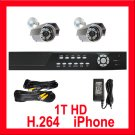 H.264 1TB HDD DVR 2 High Def Camera Outdoor CCTV System